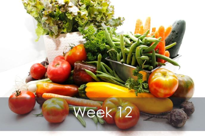 Organic Vegetable CSA share basket Week 12