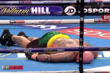 dillian-lucas-browne-boxing