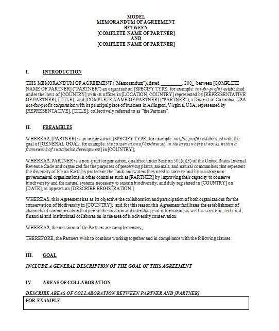 Partnership Agreement Template 17