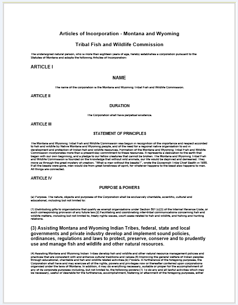 articles of incorporation template 03