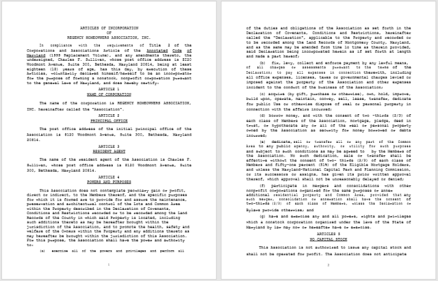 articles of incorporation template 17
