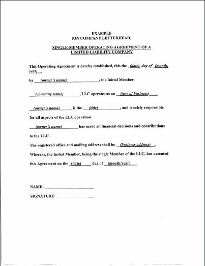 llc operating agreement template 19