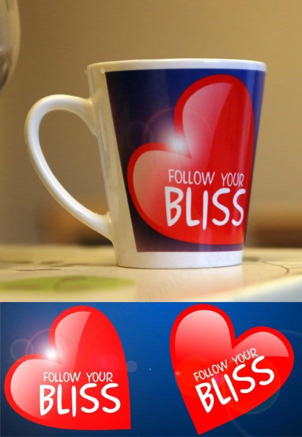 12 oz mug follow bliss mug