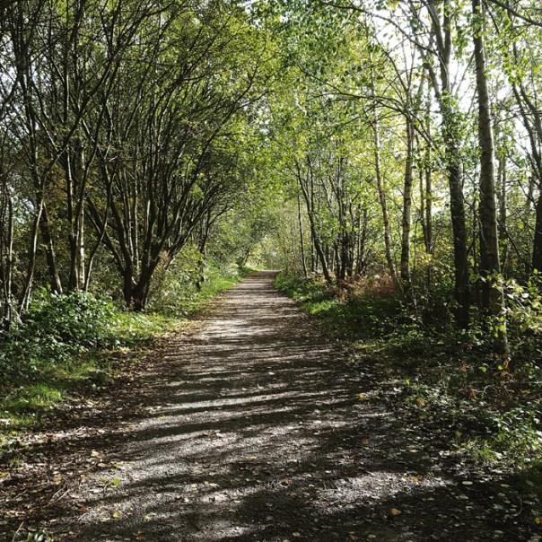 hindley canal railway walk photographs