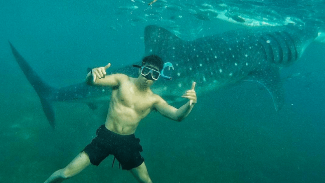 Mike Vestil Swimming With Whale Sharks In Oslob