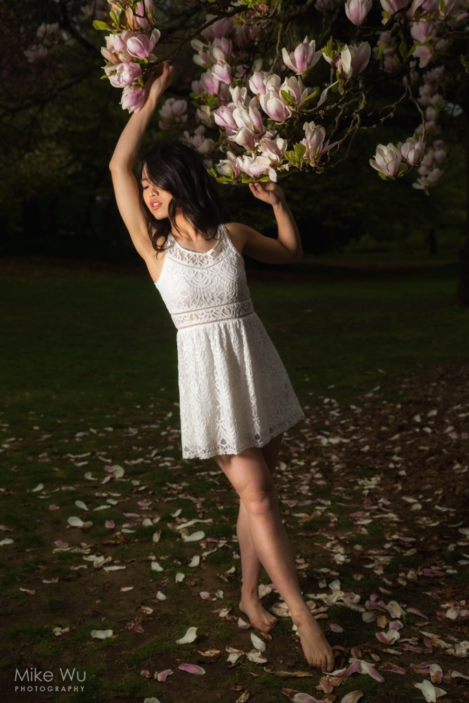 Another break from cherry blossoms, this time with a magnolia tree. This photo was taken using a flash on HSS and softbox on camera left. Model Joanne Zhou