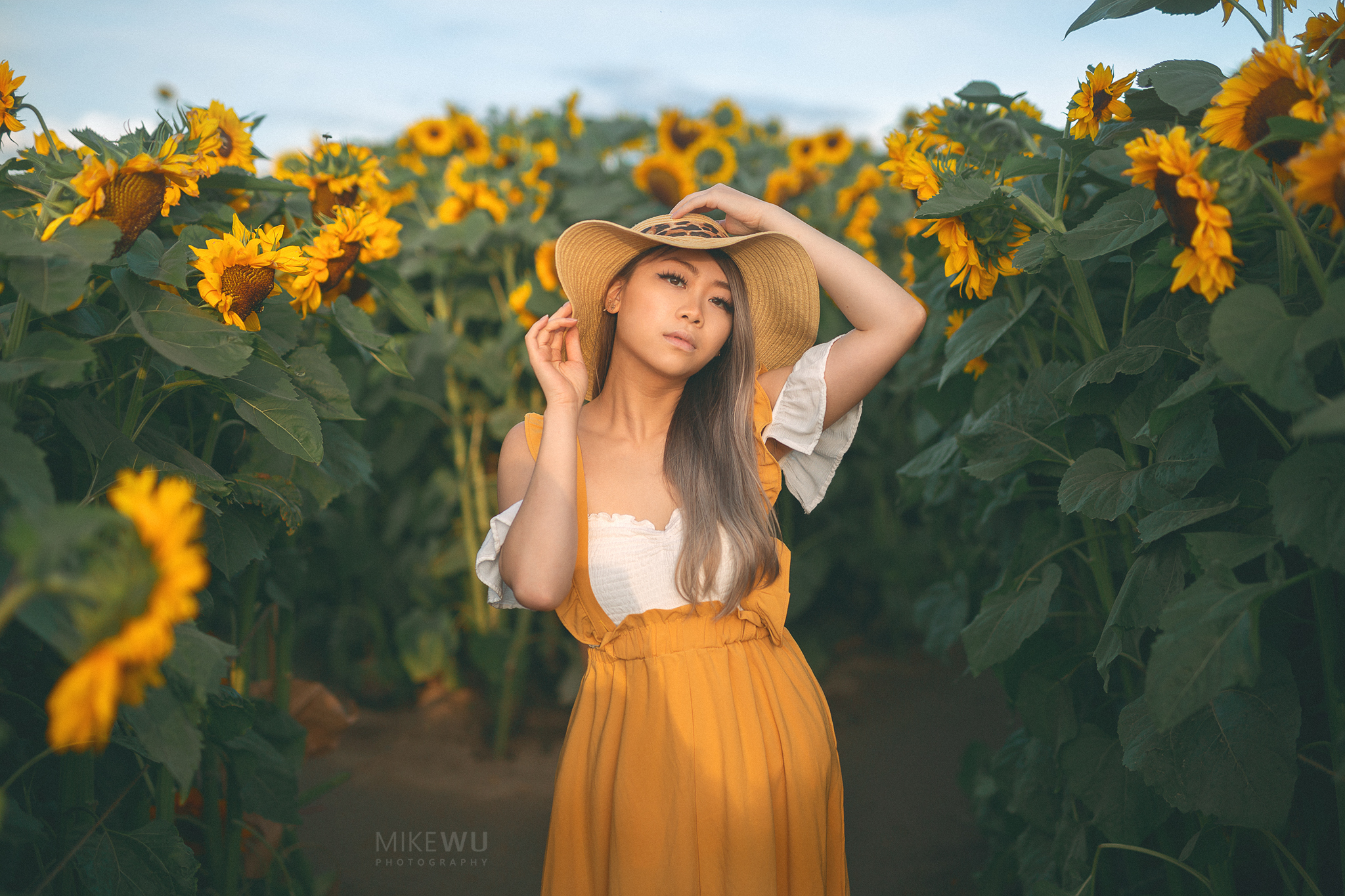 vancouver portrait photographer mike wu girl sunflowers field fine art photography golden hour beauty hat mustard yellow dress field outdoors summer autumn chiliwack abbotsford sunflower festival unique beauty chinese