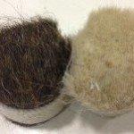 Plastering Hair, Fibres, Hessian & Mesh