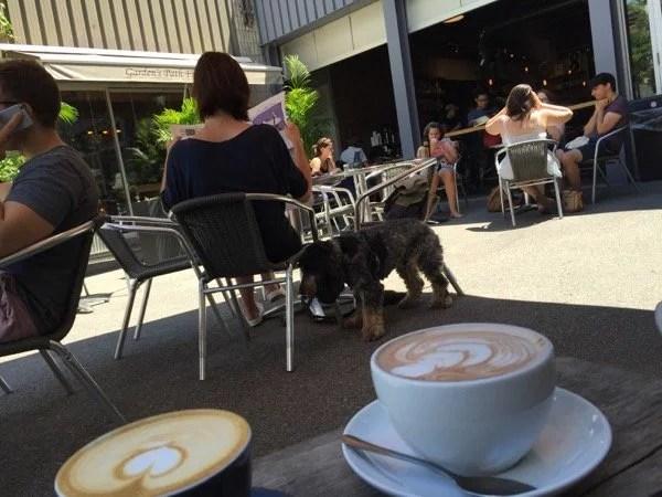 Te Aro Cafe em Toronto