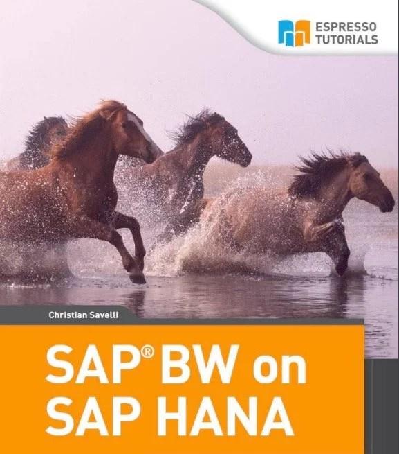 SAP BW on SAP HANA by Christian Savelli
