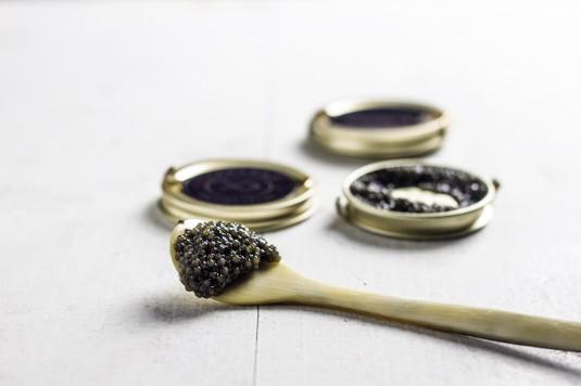 Lyksvad Caviar - foto Mikkel Bækgaard