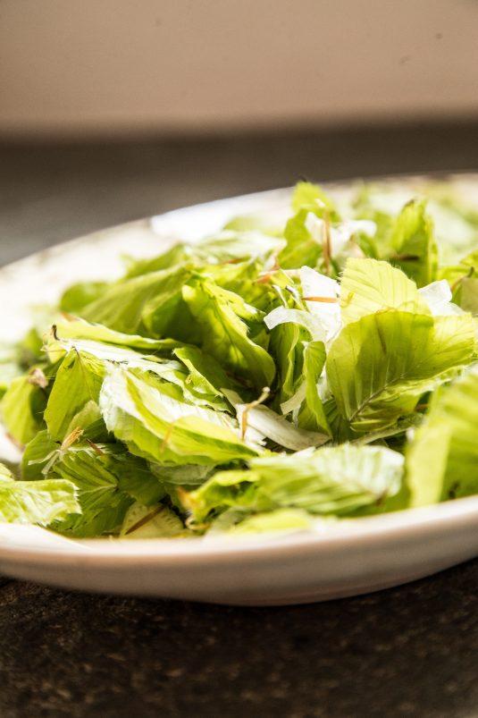 salat med bøgeblade og fennikel