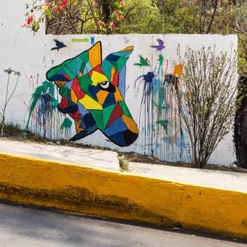mexico_city_2018_gabriel_hernandez_07