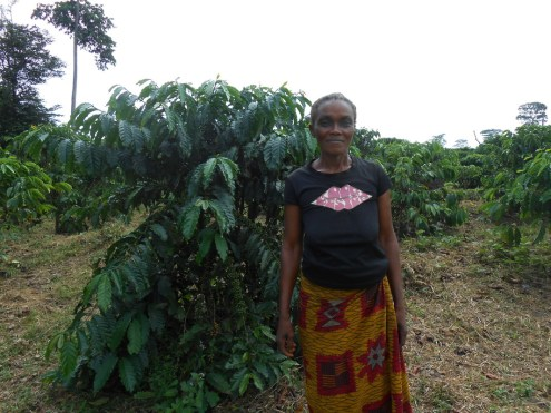 En kaffebonde i Congo