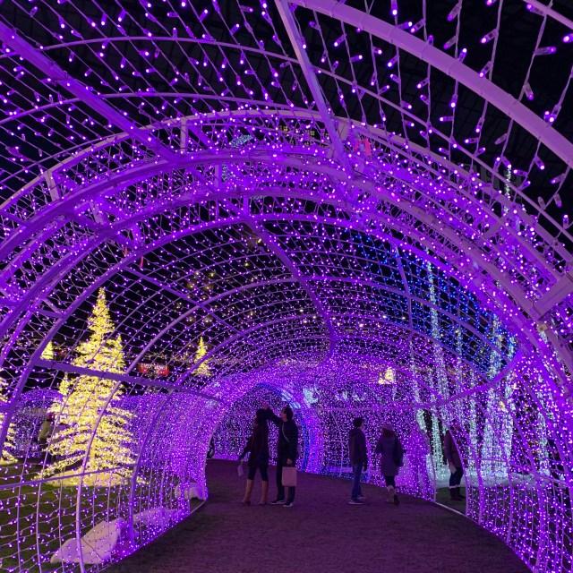 Atrações de Natal em Seattle - Enchant Christmas Seattle