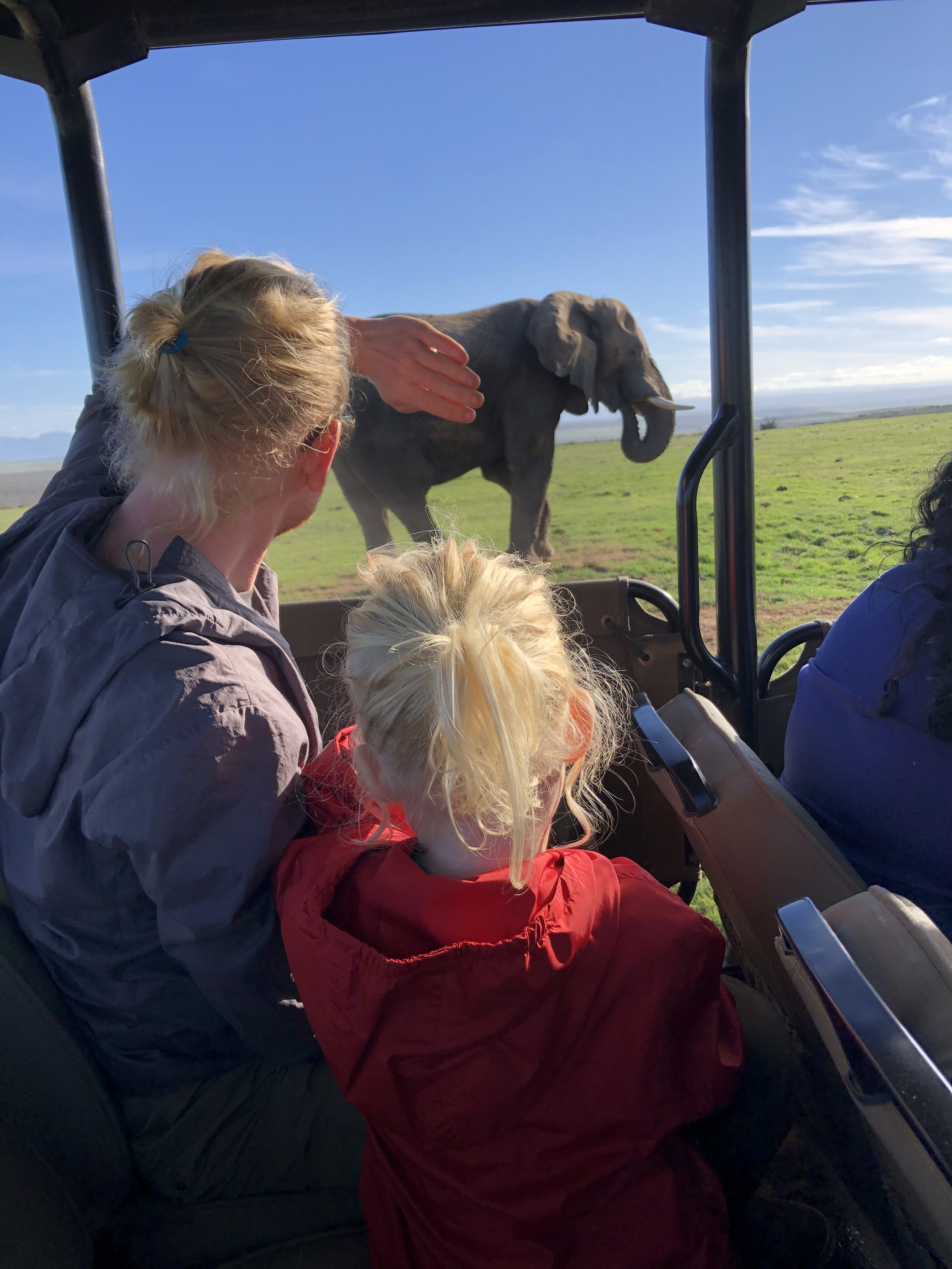 Ethical Animal Encounters South Africa