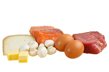 Animal Protein