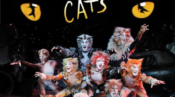 cats-5