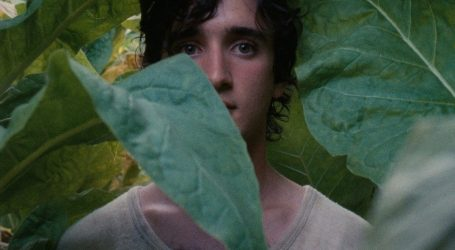 A Cinema senza Barriere, Lazzaro felice di Alice Rohrwacher