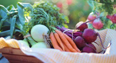 Apre a Milano il mercato agricolo più grande della Lombardia