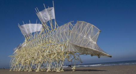 Strandbeest, Theo Jansen
