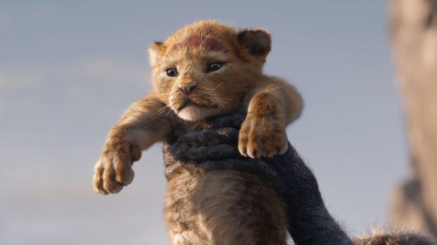 Il re leone live action