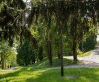 Parco Monte Stella, al via la riqualificazione