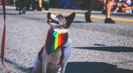 Quiz: Milano LGBT, quanto conosci il lato gay della città?