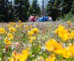 Estate in Val di Non: picnic nella natura e le magie del MUSE