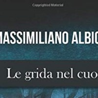 Le grida nel cuore - Massimiliano Albicini