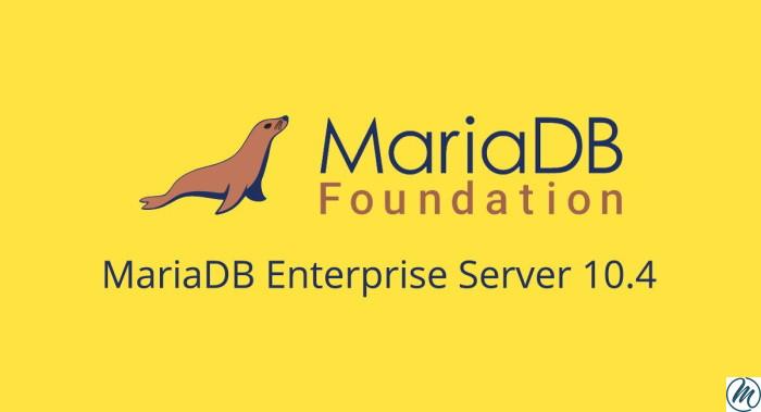 MariaDB : Gide d'installation sur ubuntu 18.04-20.04