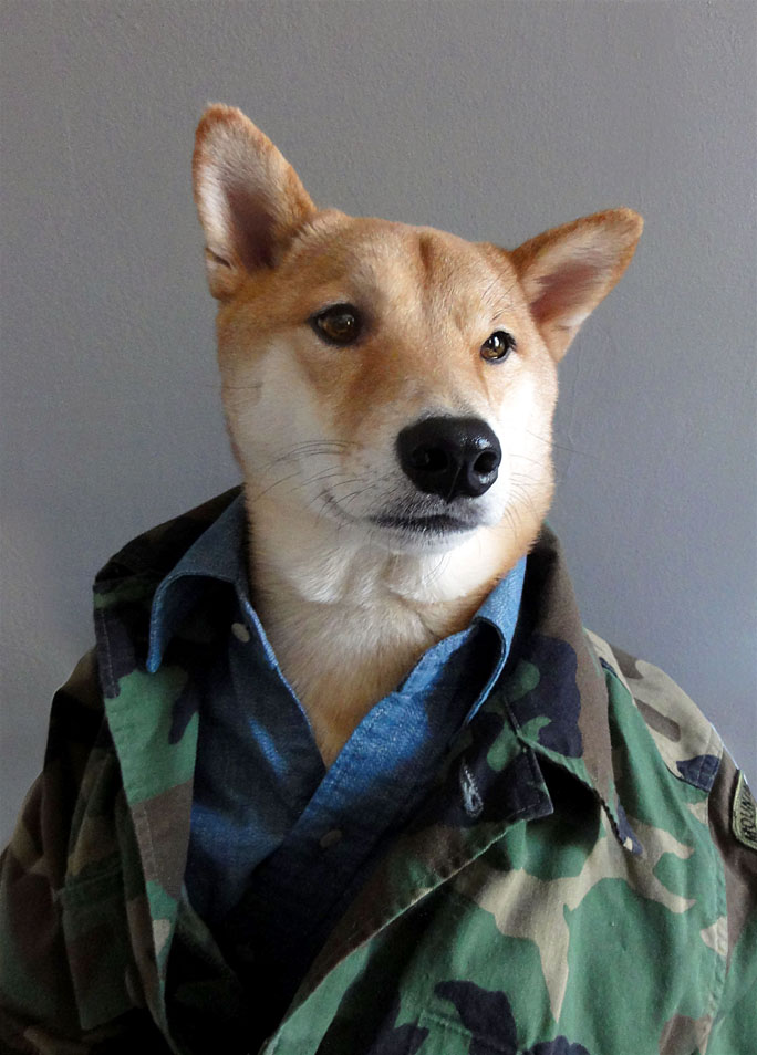 Menswear Dog Layers With Camouflage