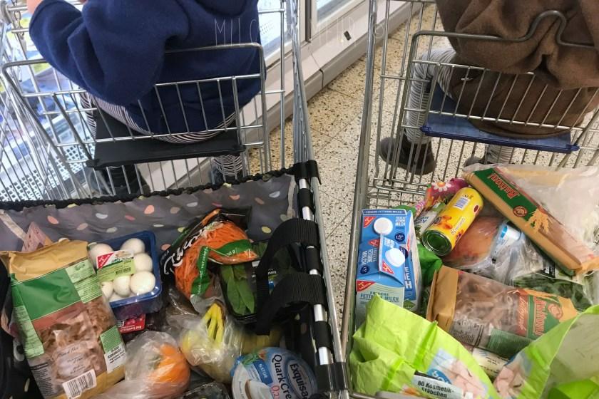 Wocheneinkauf mit zwei kleinen Kindern