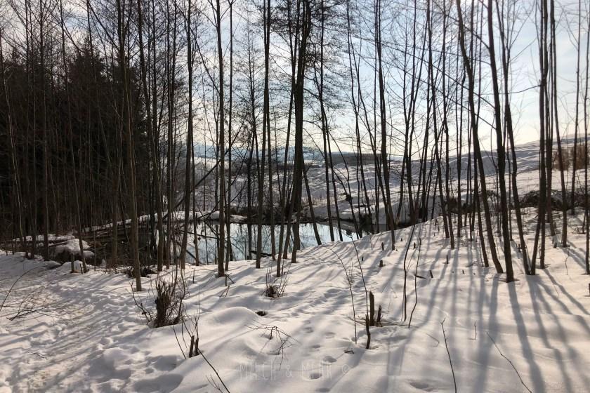 Natur erleben um Familienresort Schreinerhof