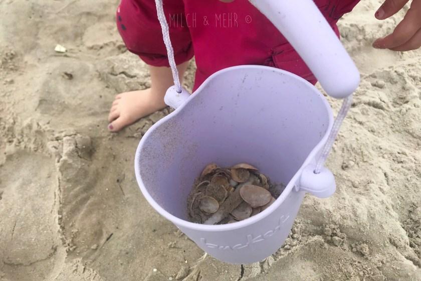WIB #kw29 Muscheln suchen am Strand