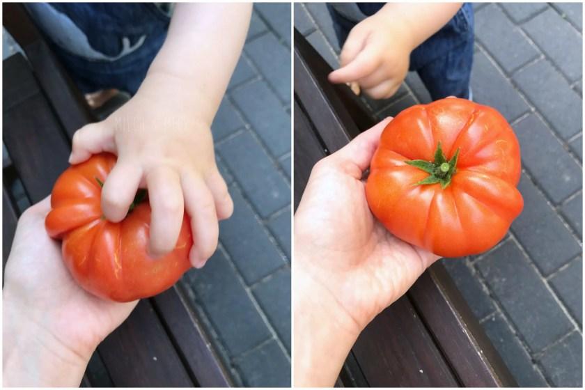 WIB #kw34 riesige Tomate selbstgeerntet