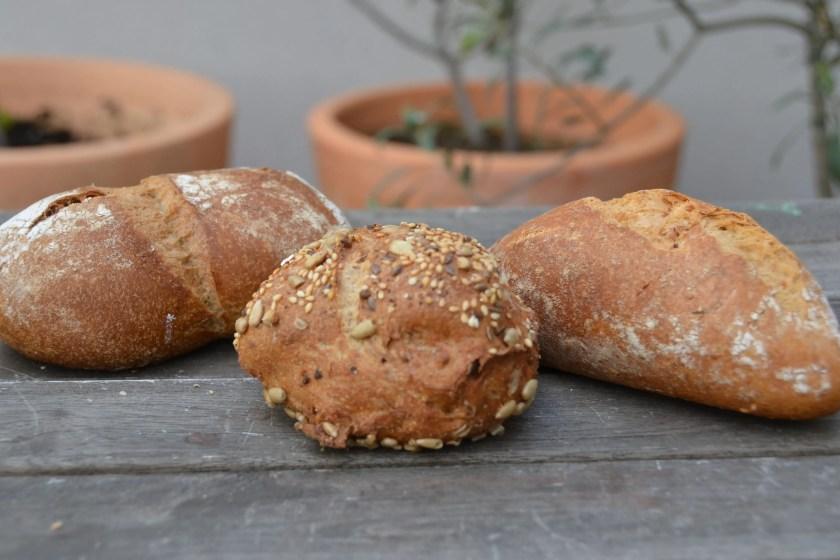 die besten Broetchen Sorten im Vergleich