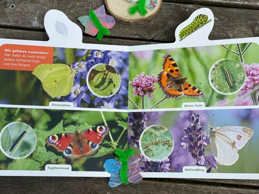 Fotobuch Schmetterling fuer Kinder