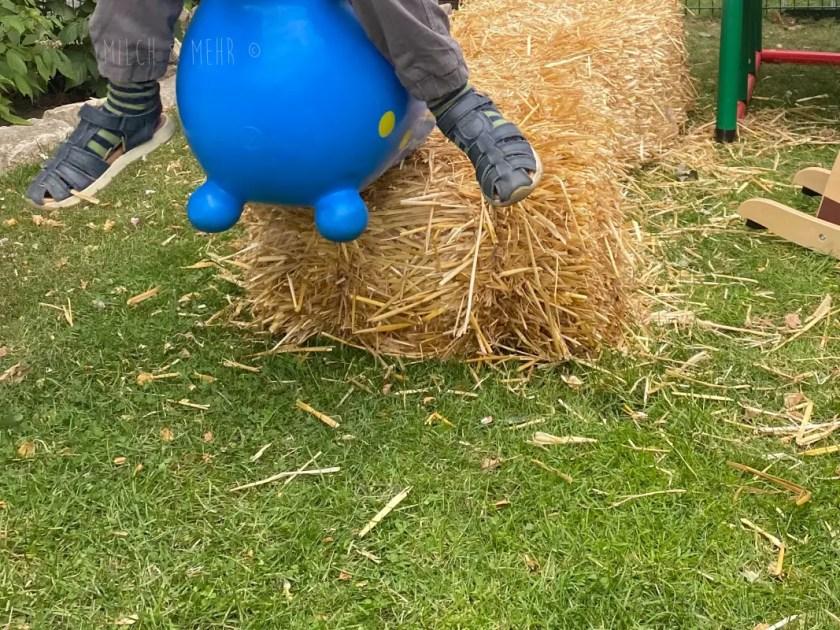 Kindergeburtstag Frei Spielen Pferde
