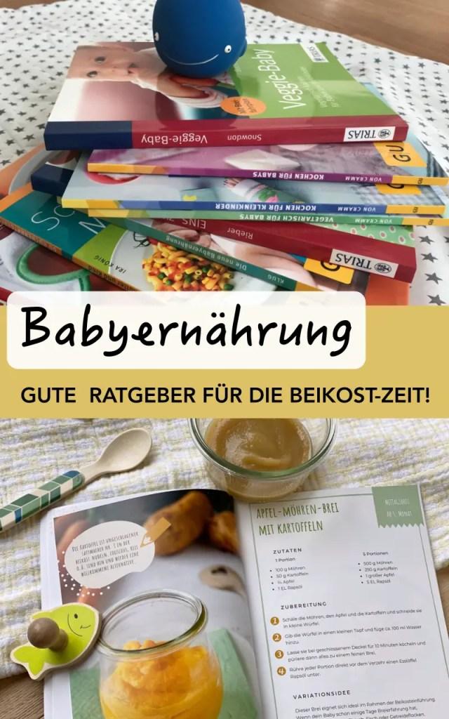 Babybrei Buecher Pin 1
