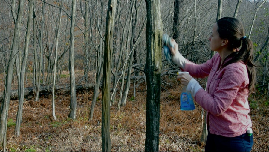 Natural Cleaners video still - 01