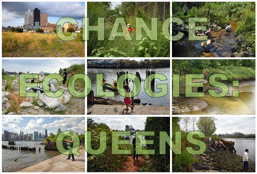 chance_ecologies_queens__final_image_small