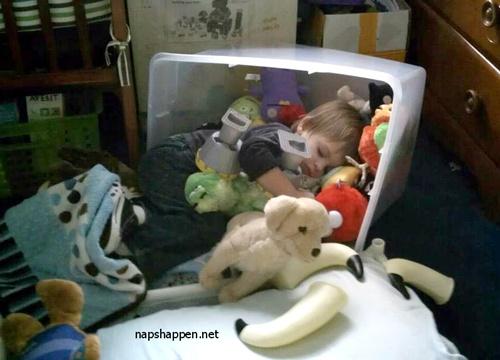 No meio dos brinquedos