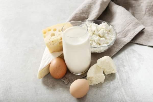 fontes de vitamina B12