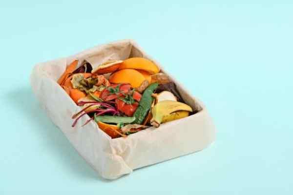 caixa com resíduos de alimentos desperdiçados