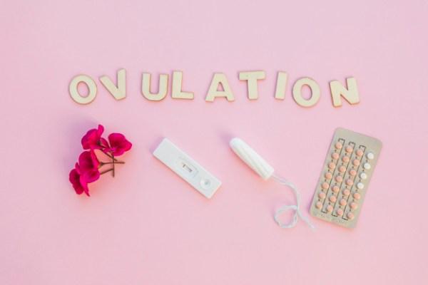 ovulação