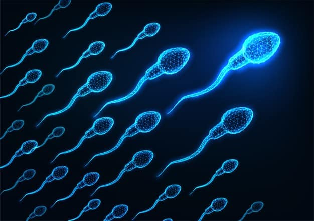 ECorrimento branco antes da menstruação