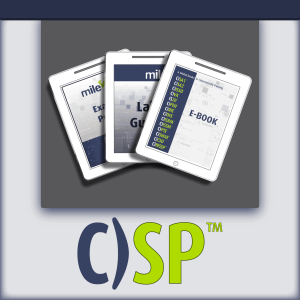 C)SP Certified Security Principles e-course kit