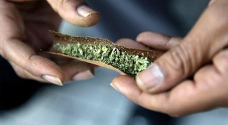Governo federal vai gastar 36,4 milhões de dólares em cinco anos na campanha para educar os canadianos sobre a legalização da marijuana