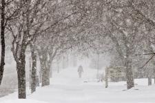 GTA e sul do Ontário sob declaração meteorológica especial devido a previsão de primeira queda significativa de neve